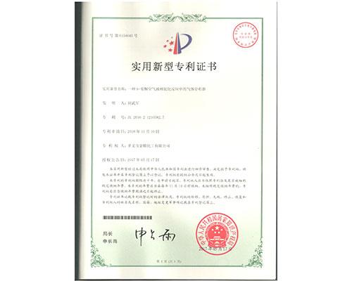 一种9-芴酮空气液相氧化反应中的气体分布器-实用新型专利证书